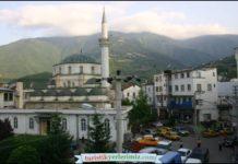Carsi-Merkez-Camii-Artvin